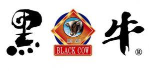 广西黑牛食品